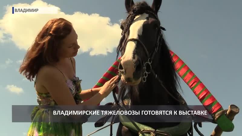 2016 08 10 HD Владимирские тяжеловозы