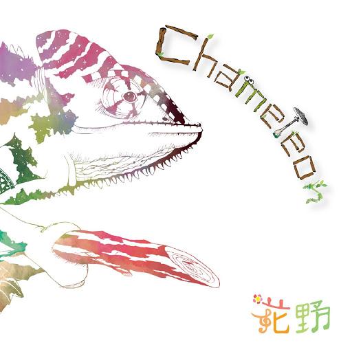 kano альбом Chameleon
