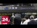Жертвами мощного землетрясения в Японии стали два человека Россия 24