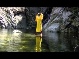 Shi Xingshan Shaolin Wushu.