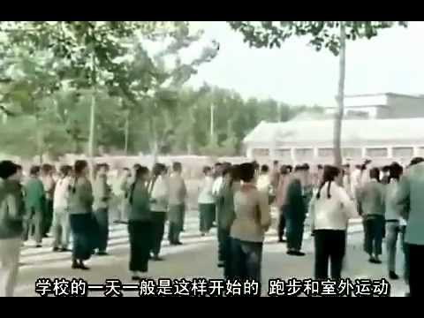 Taiji Quan During The Cultural Revolution