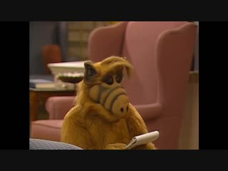 Alf Quote Season 3 Episode 7 _Закон