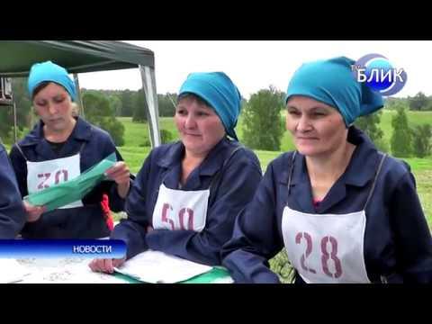 Конкурс мастеров машинного доения 2018