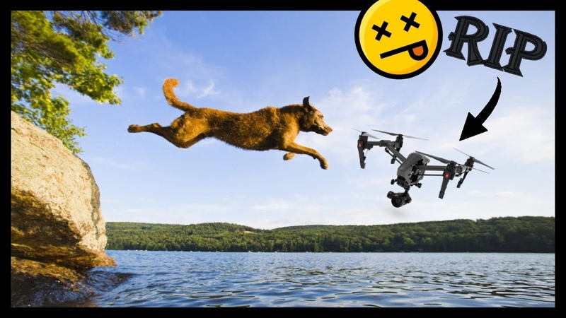 DRONES Vs ANIMALS - [Video contains VIOLENCE SHATTERED PROPELLERS that may offend DRONE LOVERS]