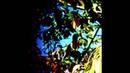 Coppice Halifax - Untitled