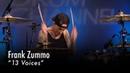 Frank Zummo 13 Voices