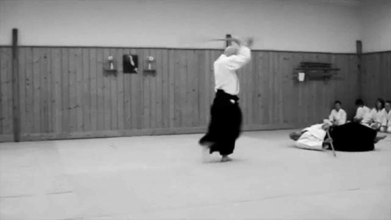 показательные выступления Гетеборгского клуба такемусу айкидо
