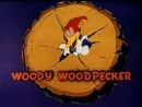 Woody Woodpecker - 196 - Bye, Bye, Blackboard