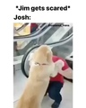 @bestofjosh on Instagram i meant to post this at like, 6CREDIT @coconut_frens