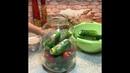 Блюда для перекуса Малосольные огурцы и помидоры