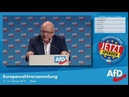 """Michael Schlembach AfD: """"Claudia Roth, dieses missglückte Picasso-Gemälde"""" 14.01.2018"""