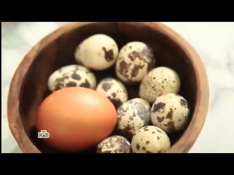 Что вредно в перепелиных яйцах
