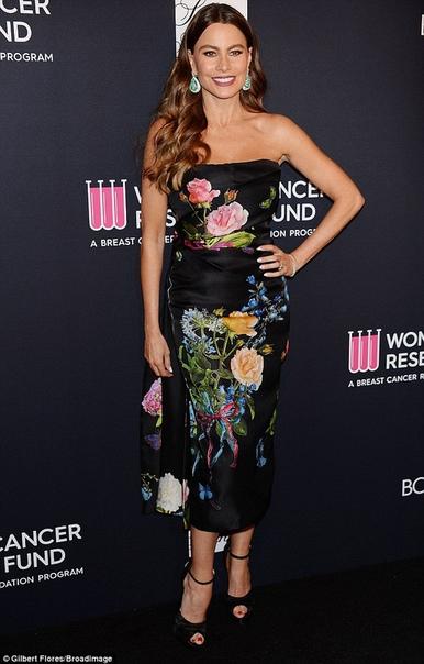 Названы самые высокооплачиваемые актрисы сериалов Колумбийка София Вергара признана самой высокооплачиваемой актрисой сериалов по версии журнала Forbes. Она возглавила рейтинг в седьмой раз