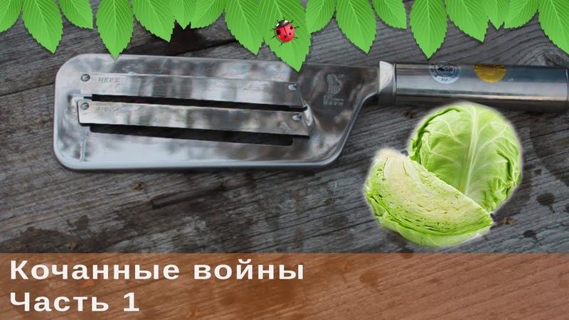 Кочанные войны, ч.1. Заготовка маринованной капусты на зиму.
