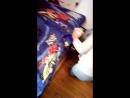 Кроватка-машинка Турбо Синяя 2