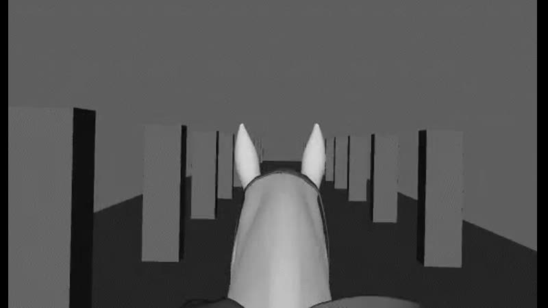 Another horse riding viewmodel test I forgot to post again just an RD test rust animation viewmodels horseriding facepunch tes