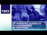 В Петербурге задержали подозреваемых в терроризме