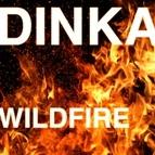 Dinka альбом Wildfire