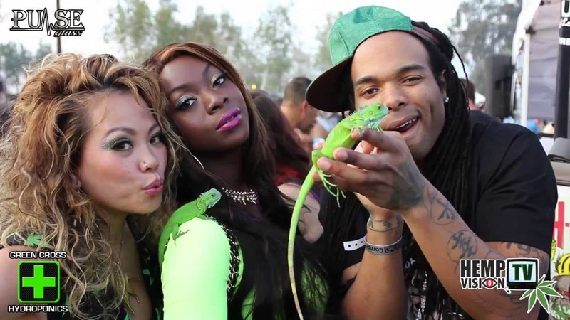 High Times Cannabis Cup 2014 with Pulse Glass