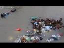 Собака спасает щенка в наводнение