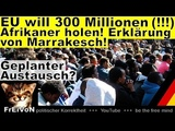 EU will 300 Millionen Afrikaner holen! Erkl