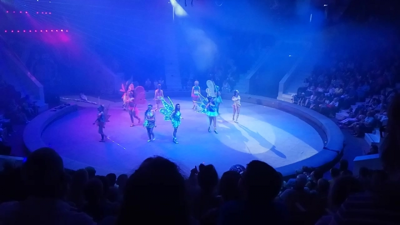 Цирк Юрия Никулина 4