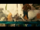 Любовь Садомаза - Такая Зараза ( - Remix HD )