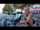 Кормление с руки голубей в Новороссийске (20.09.2018)