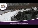 Форель радужная зимой в пруду видео из под воды