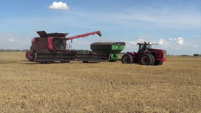 2016 Wheat Harvest - Alva Oklahoma