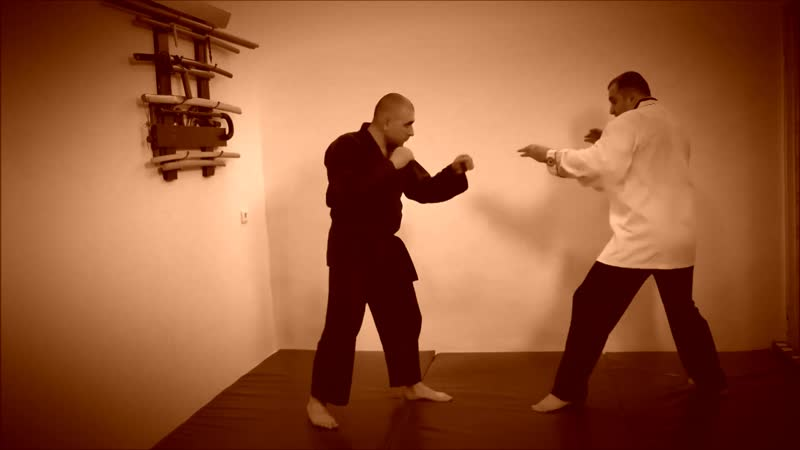 Rebel Hapkido Series 합기도 By Vidadi Hajiyev (25)