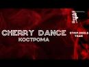 CHERRY DANCE STRIP HEELS TEAM BEST Я 2018