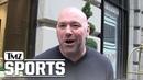 Dana White Says Khabib Ain't Quitting UFC 'We Worked It Out' TMZ Sports