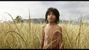 Книга Джунглей. Маугли сбегает от Шерхана