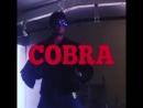 COBRA-Любимые фильмы 80-х