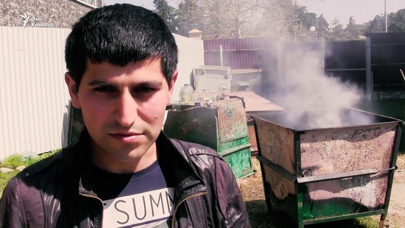 Второй этап войны с клопом в Абхазии