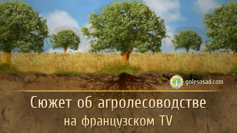 Cюжет об агролесоводстве на французском TV