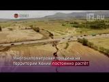 Появилось видео «распада» Африки надвое