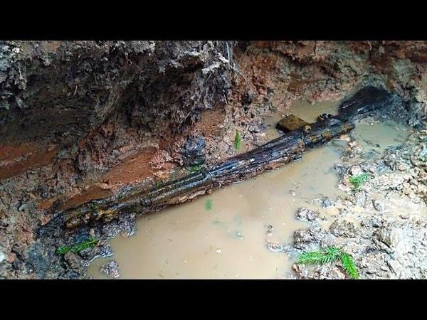 Нашли бойца и СВТ в дереве. Раскопки в Рамушевском коридоре смерти