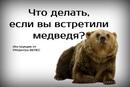 Хвостатый Копирайтер. Интересное о животных фото #2