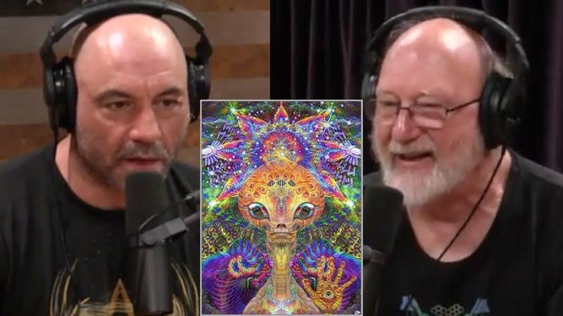 Joe Rogan - DMT ALIEN ENCOUNTERS, Timewave Zero, Tryptophan | Are mushrooms extra terrestrial?
