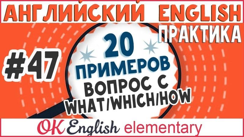 20 примеров 47 WHAT, WHICH, HOW - специальные вопросы в английском