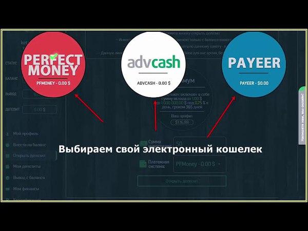 Автомайн Регистрация Перевод денег на баланс Покупка пакетов Вывод денег