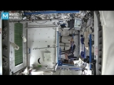 Real Astronauts Workouts on the Space Station _ Muscle Madness