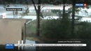 Новости на Россия 24 Торнадо убили 15 американцев