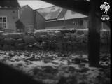 Рейд британских коммандос в Норвегию (1942)