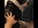 Video_2018-06-09_15-16-23