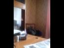 Евгений Ефимов Live