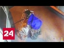 В Подмосковье разыскивают убийцу инкассаторов - Россия 24