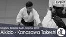 Aikido Demonstration - Kanazawa Takeshi - Kagamibiraki 2019 - 1/4